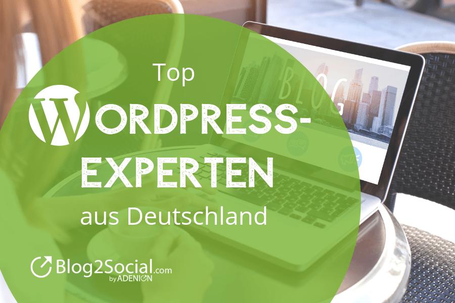 Top Wordpress Experten aus Deutschland
