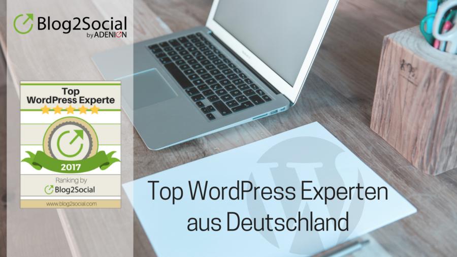 Die 10 besten WordPress Experten