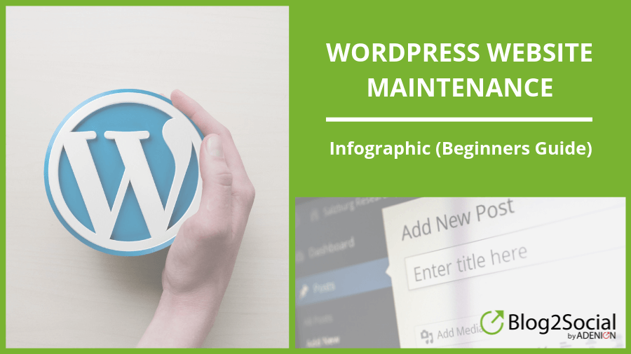 WordPress Website Maintenance Infographic (Beginners Guide)